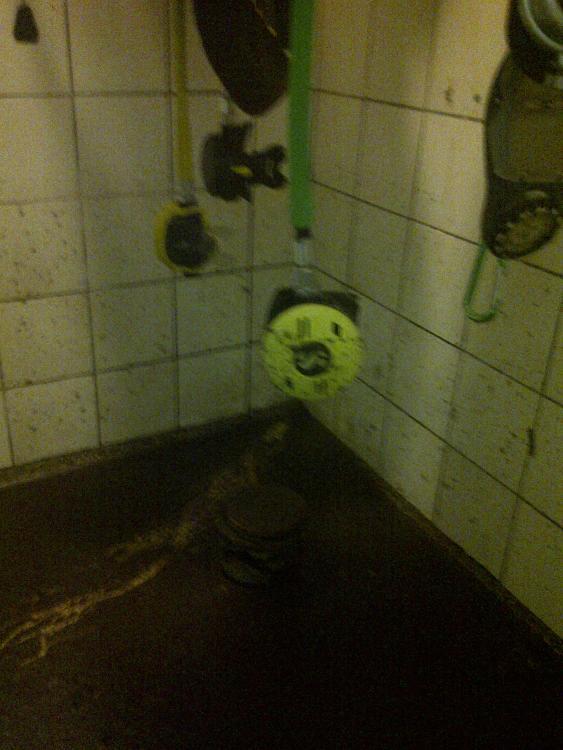 Vand i kælderen